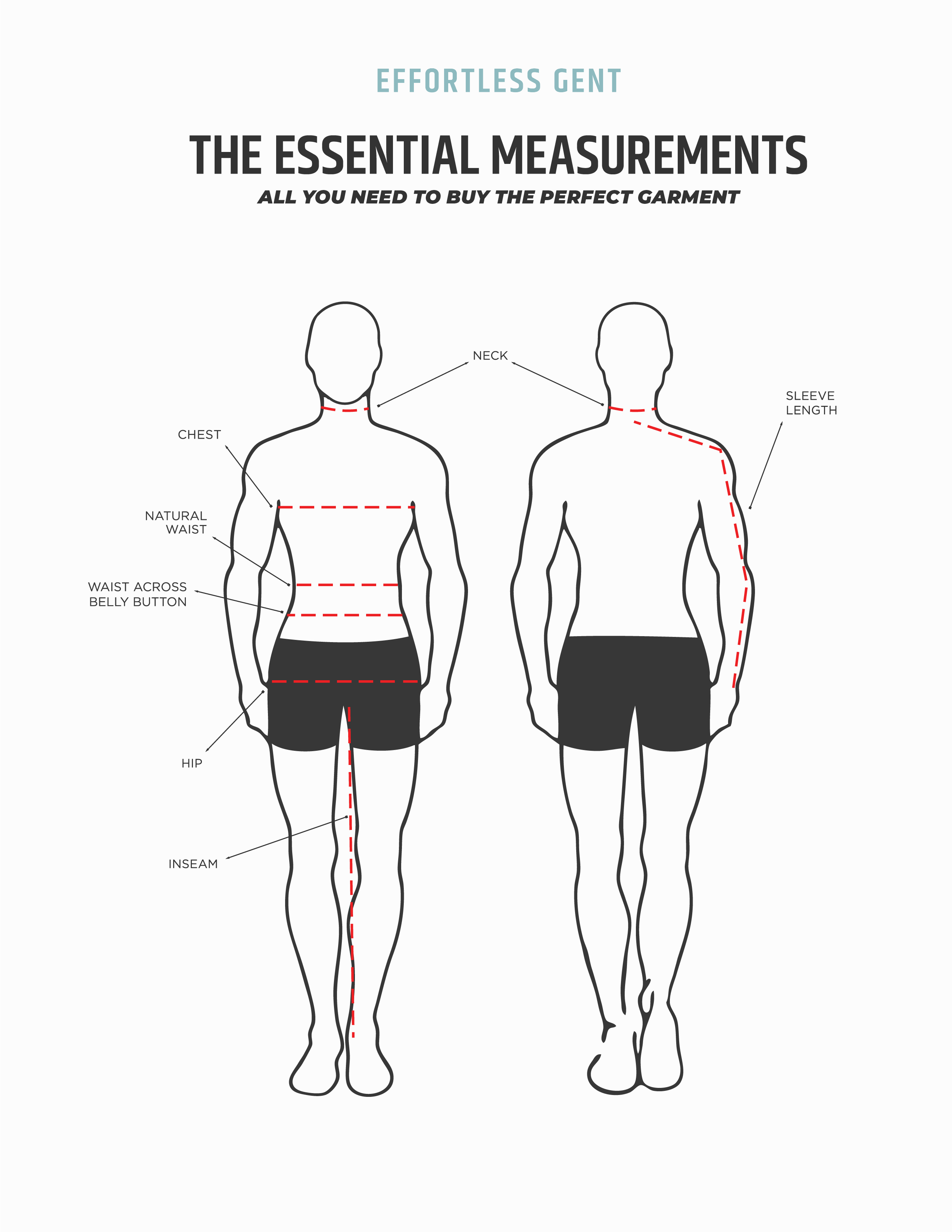 illustration of body for measurements