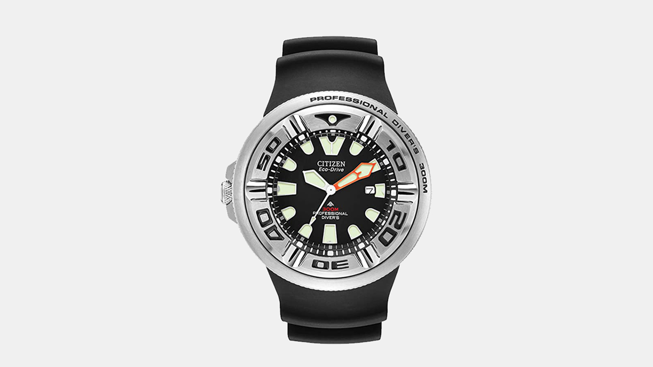 Citizen Eco-Drive Professional Divers Watch