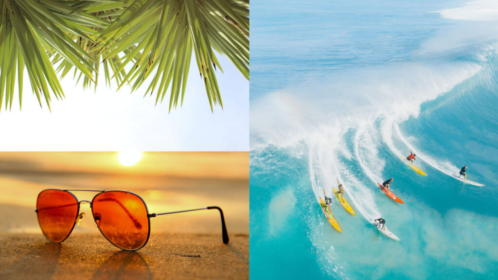 summer colors - palm tree fronds orange aviator sunglasses and blue wave surfing