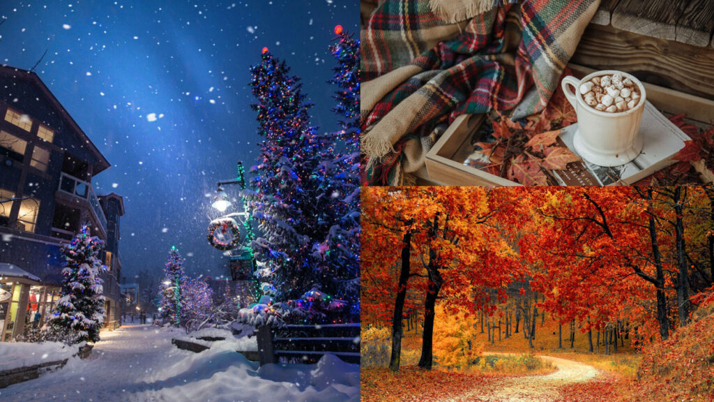 winter colors - night winter scene christmas hot cocoa plaid blanket and road in autumn with orange leaves