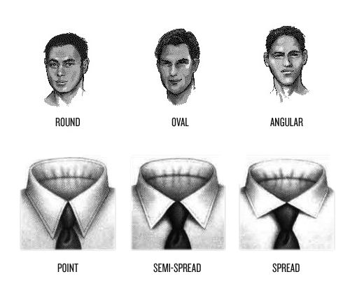 illustration of different face shapes, collars, and ties